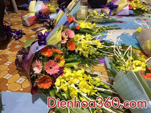 hoa su kien, hoa tang dai bieu dep gia re