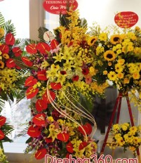 Tổng hợp mẫu hoa tươi hoa chúc mừng khai trương đẹp phong phú
