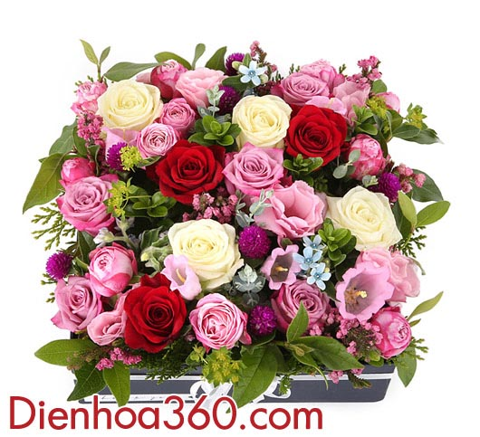 mau hoa tang 8-3, hoa tuoi tang sinh nhat