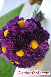 hoa cuoi va xe hoa dep