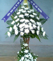Hoa đám tang | hoa tang lễ | điện hoa chia buồn