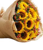 Hoa hướng dương | bó hoa hướng dương | sun flower