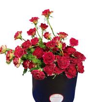 Hộp hoa hồng | hoa sinh nhật đẹp rẻ