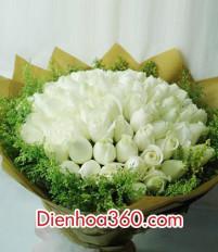 Nên tặng hoa sinh nhật là hoa hồng trắng không