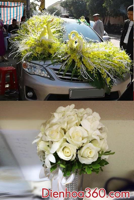 Xe hoa đẹp | Mẫu xe hoa công | hoa con công
