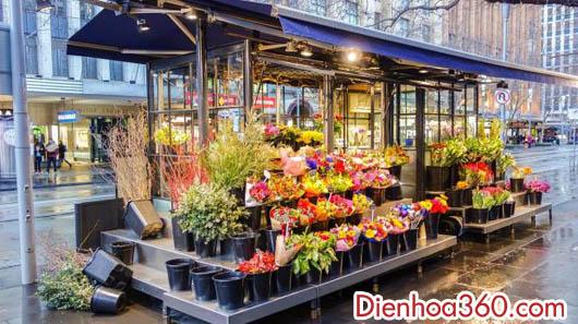 Shop hoa tươi, tiệm hoa tươi, cửa hàng hoa tươi