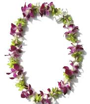 Giá vòng hoa đeo cổ | cách làm vòng hoa đeo cổ