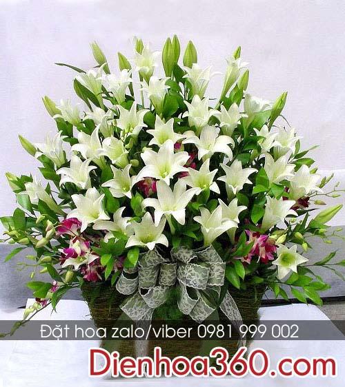 giỏ hoa loa kèn đẹp
