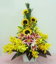 Hoa Cho Mẹ | Hoa Tặng Mẹ | Ngày của mẹ