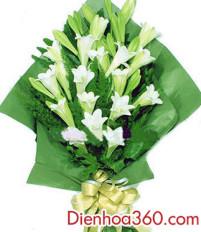 Nên tặng hoa sinh nhật là hoa loa kèn?