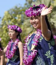 Vòng cổ hawaii | vòng đeo cổ