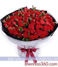 Sự tích hoa cẩm chướng, ý nghĩa các loài hoa