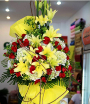 Hoa chúc mừng đẹp | hoa khai trương