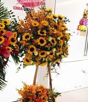 Kệ hoa chúc mừng đẹp giá rẻ |hoa hướng dương