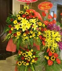 Mua hoa tươi ở đâu chất lượng và uy tín mà giá lại rẻ