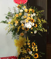 Flowers congratulations | kệ hoa hồng