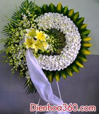 Hoa tang trắng đẹp và sang trọng