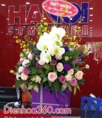 Những mẫu hoa tặng 20/11 rẻ và đẹp
