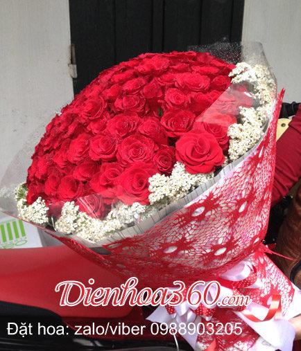 hoa-hong-do-valentine