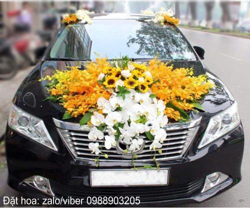 Xe hoa cưới đẹp | Lan hồ điệp