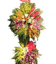 Đặt hoa chúc mừng hoa tươi