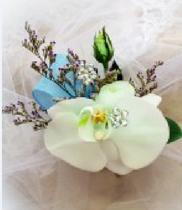 Hoa cài áo lan hồ điệp