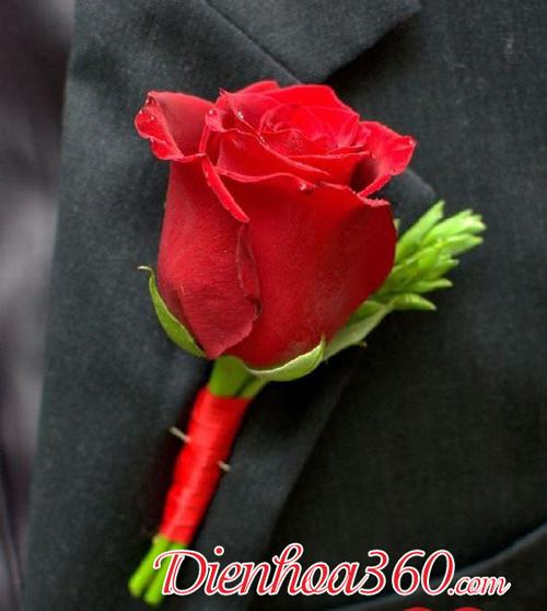 Hoa cài áo hội nghị hoa tươi