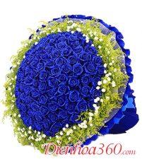 Tổng hợp ảnh hoa sinh nhật đẹp nhất thế giới!