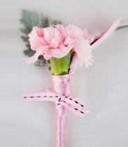 Hoa tươi cài áo đại biểu | hoa phăng