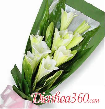Địa chỉ mua hoa loa kèn