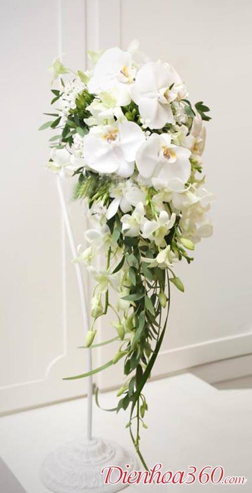 Hoa cưới đẹp 2018, Hoa lan