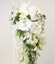 Hoa cưới đẹp 2018 | Hoa lan