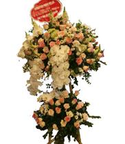 Hoa tươi chúc mừng đẹp | Lãng hoa