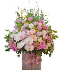 Hình ảnh hoa đẹp 20-10, các mẫu hoa đẹp để tặng 20-10, hoa tuoi, shop hoa toi