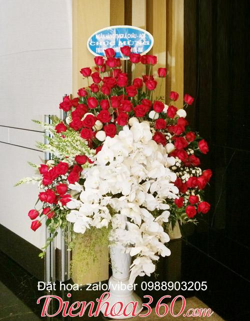 Hoa chúc mừng đẹp nhất, lan hồ điệp