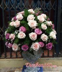 Hoa chúc mừng sinh nhật mẹ chồng nên tặng hoa gì?