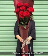 Ý nghĩa sơ lược về hoa hồng ECUADOR