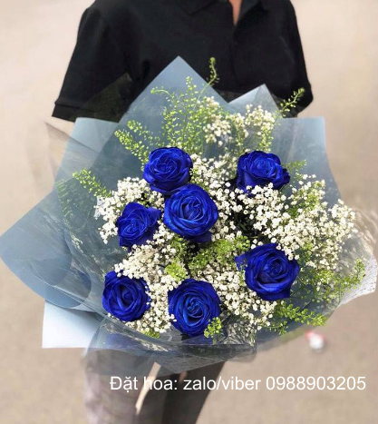 Hoa hồng xanh nhập khẩu