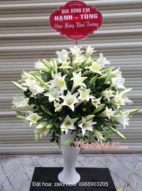 Bình hoa loa kèn đẹp nhất