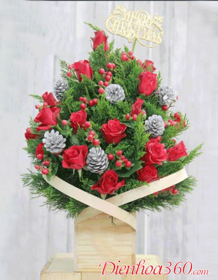 Hoa chúc mừng Giáng Sinh Noel