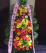 Ảnh hoa khai trương Hàn Quốc Đẹp