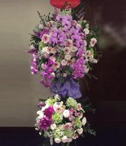 Đặt hoa chúc mừng khai trương Hàn Quốc