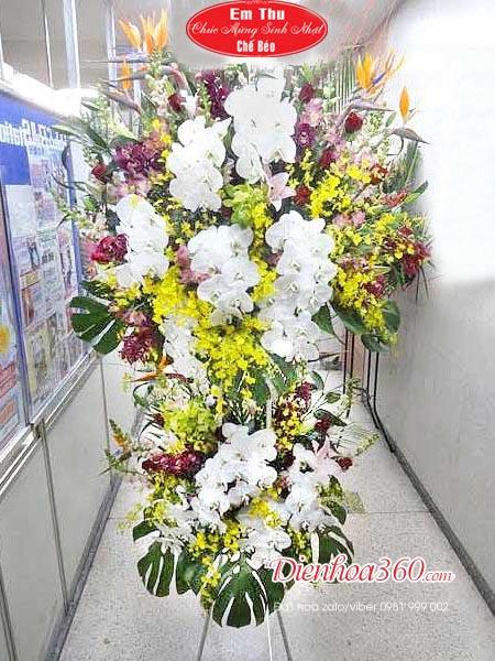 Lãng hoa đẹp nhất hoa chúc mừng