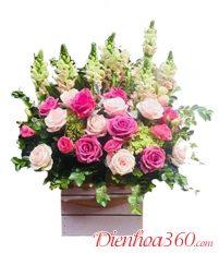 Hoa sinh nhật và cách viết thiệp chúc mừng