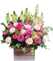 Hoa chúc mừng sinh nhật hoa để bàn