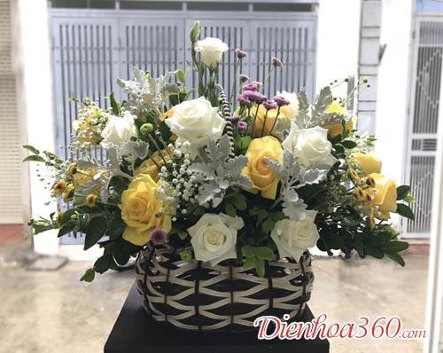 Hoa chúc mừng giá rẻ – hoa hồng