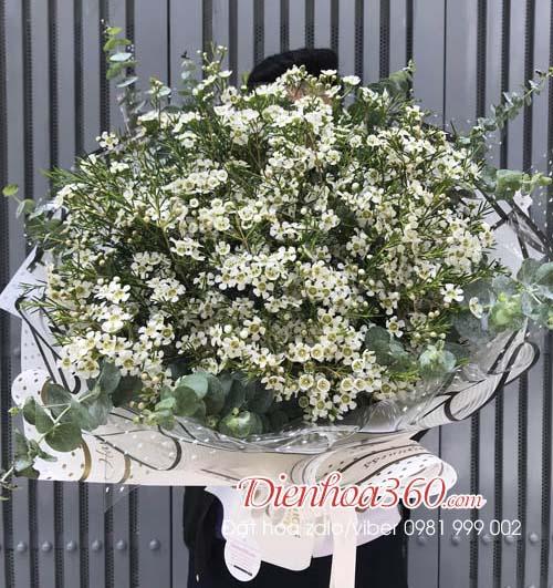 Hoa tặng sinh nhật hoa thanh liễu
