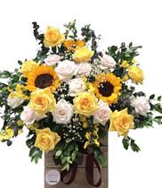 Hoa sinh nhật giá rẻ đẹp